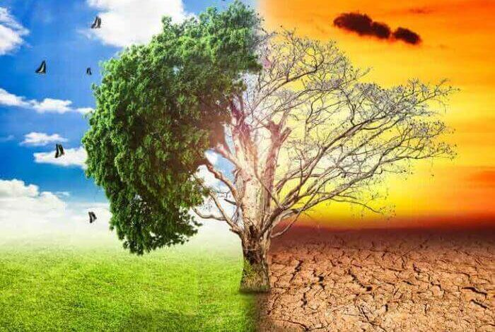 Climate Change May Trigger higher Suicide Rates
